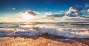 2019 photo 1 15686252165612140923135 60 0 957 1434 crop 1568625310237 637042495541250000 300x158 - Nguồn cung mới đất nền ven biển Long Hải