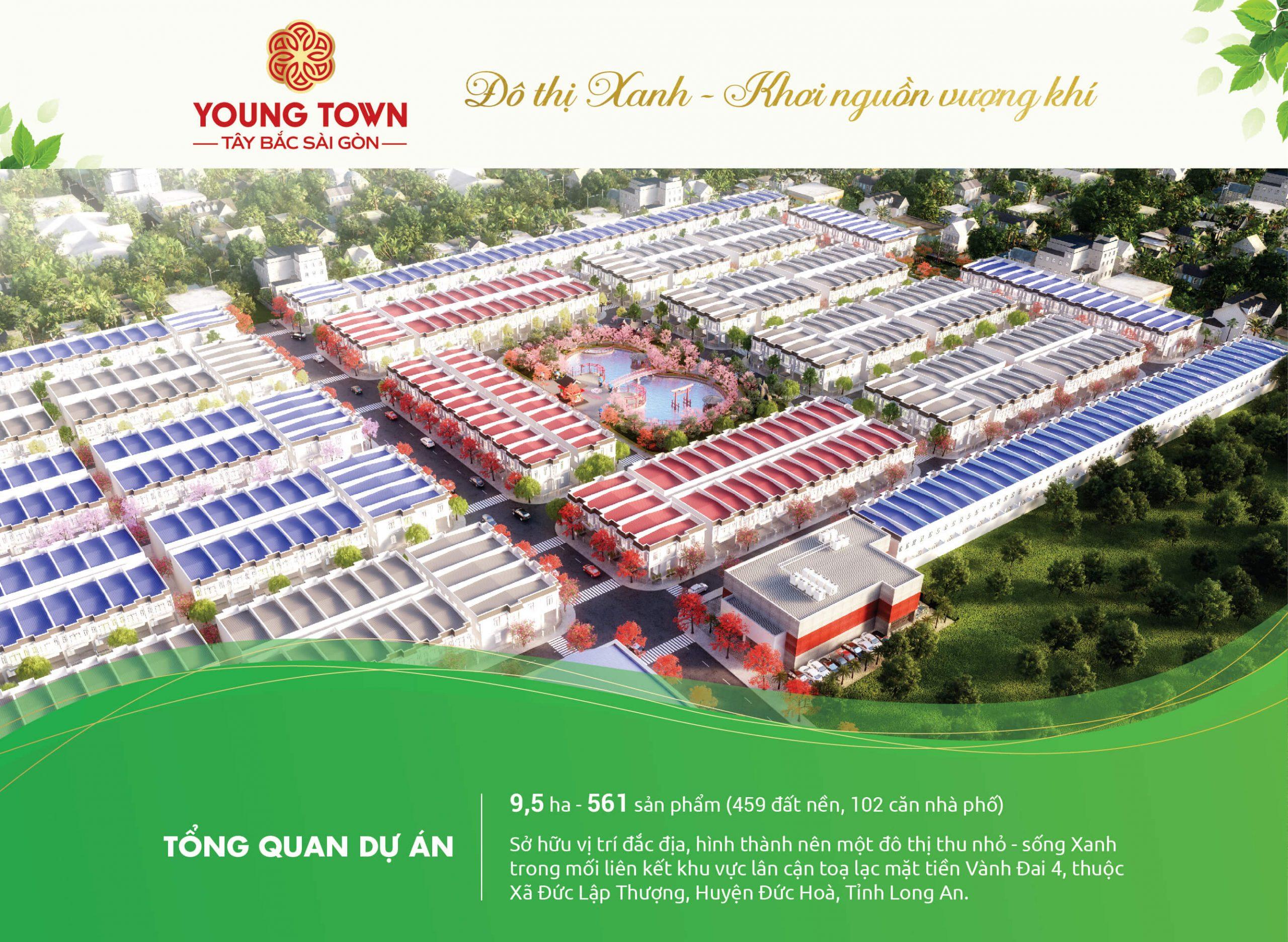 TỔNG QUAN DỰ ÁN YOUNG TOWN